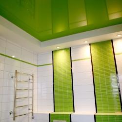 Зеленый потолок в туалете в Гомеле