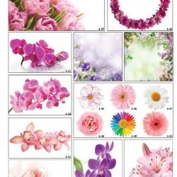 Фотопечать нежных цветов в Гомеле