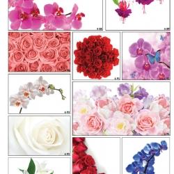 Фотопечать цветочных композиций в Гомеле