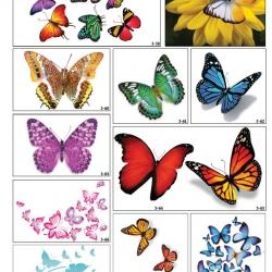 Фотопечать с бабочками в Гомеле