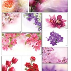 Фотопечать потолков с цветами