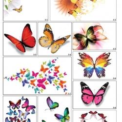 Фотопечать разноцветные бабочки